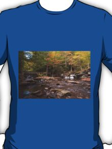 Watching The Waters Meet (As-Is) T-Shirt