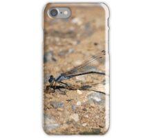 Blue Flies iPhone Case/Skin