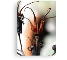 Rusty Crown Canvas Print