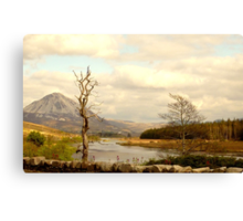Mount Errigal From The Lodge Canvas Print