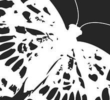 Moth on Grey by Chromapit Designs