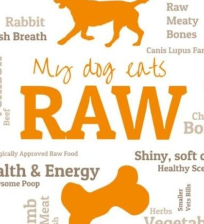 Raw Food Dog Sticker