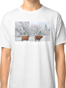 Highland Cattle in winter Classic T-Shirt