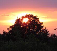 Iowa Summer Sunset Sticker