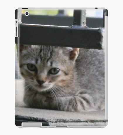 KITTENS! iPad Case/Skin