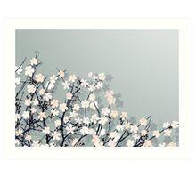 Spring time Art Print