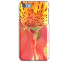 Tiger Lily in the Sunlight iPhone Case/Skin