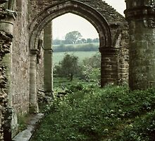 Ruins at side of Church Abbey Dore England 198405170073  by Fred Mitchell