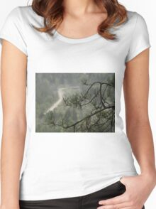 Branch of pine Women's Fitted Scoop T-Shirt