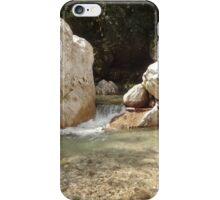 Clumps iPhone Case/Skin