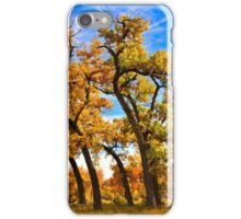 Autumn Dance of the Tall Trees  iPhone Case/Skin