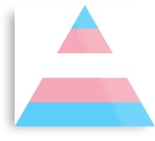 Transgender triangle flag Metal Print