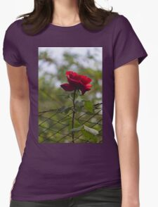 rose in the garden Womens Fitted T-Shirt