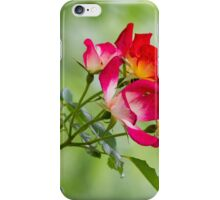 flower in spring iPhone Case/Skin