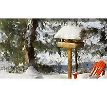 Birdfeeder in Winter Photographic Print
