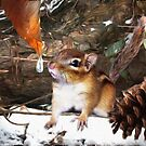 """Curious Chipmunk"" by Melinda Stewart Page"