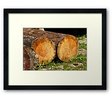 cracked felled trees Framed Print