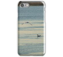 Seagulls At Breakfast | Wantagh, New York iPhone Case/Skin