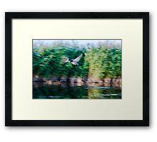 Dynamism of a Mallard Framed Print