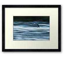 Dynamism of a Cormorant Framed Print