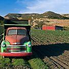 Strawberry Farm Truck by Zane Paxton