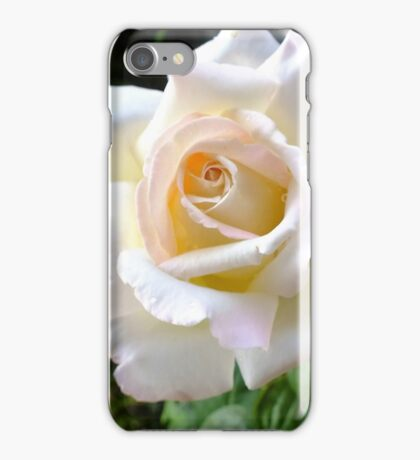 Just a pretty rose.  iPhone Case/Skin