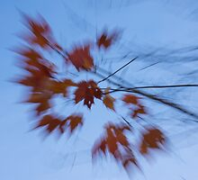 Abstract Impressions of Fall - Autumn Wind Melody by Georgia Mizuleva