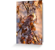 Mother Nature's Christmas Decorations – Golden Oak Leaves Jewels Greeting Card