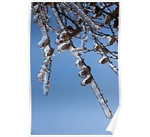 Mother Nature's Christmas Decorations – Sparkling Twigs and Pine Cones Poster
