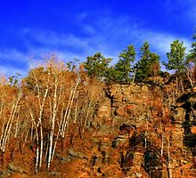 THE CANADIAN SHIELD!!! by Larry Trupp