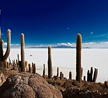landscapes of the Andes by travel4pictures