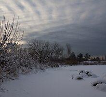 Clearing Snowstorm by Georgia Mizuleva
