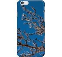 Mother Nature's Christmas Decorations - Shiny Ice Baubles  iPhone Case/Skin
