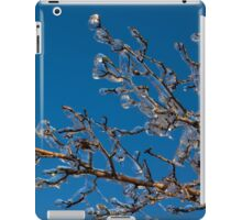 Mother Nature's Christmas Decorations - Shiny Ice Baubles  iPad Case/Skin