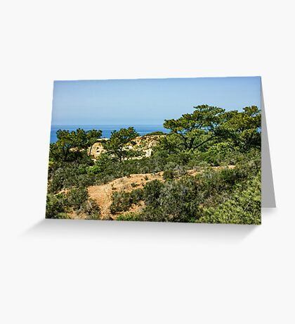 Torrey Pines - Unexpected Wilderness on the Southern California Coast Greeting Card
