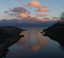 Pink and Blue Serenity - a Lakefront Stillness  by Georgia Mizuleva