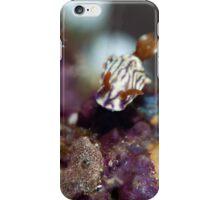 Zephyr Hypselodoris iPhone Case/Skin