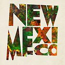 New Mexico Typographic Watercolor Map by Deniz Akerman