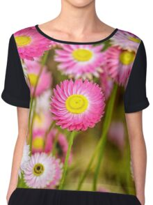 Everlasting Daisies, Kings Park Chiffon Top