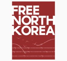 Free North Korea  by koolbody