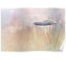 Lonely Mushroom Poster