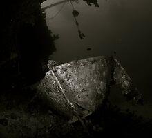 Cedar Pride Wreck by Aziz T. Saltik