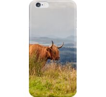 Cow on the brae iPhone Case/Skin