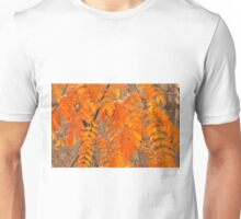 Mountain Ash Leaves in Autumn Unisex T-Shirt
