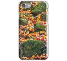 Rocks and Leaves iPhone Case/Skin