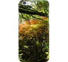 Beautiful Trees at Escot, Devon UK iPhone Case/Skin