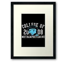 College of Methamphetamine Framed Print