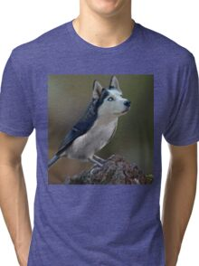 Dird  Tri-blend T-Shirt