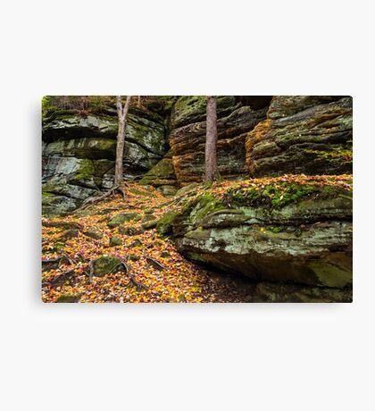 Cliffs of Autumn Color Canvas Print