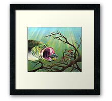 Large Mouth Bass and Clueless Bait Fish Framed Print